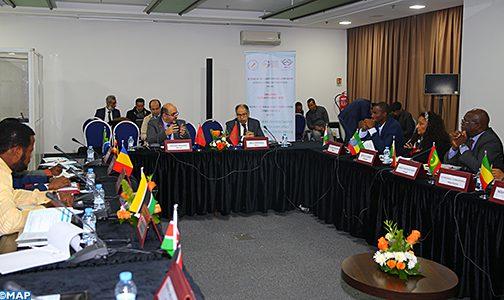 الدعوة إلى تعزيز القدرات الإفريقية في مجال الذكاء الاقتصادي